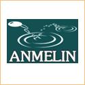 logo_Anmelin